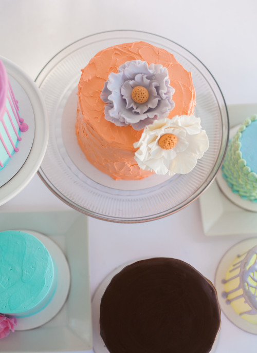 View More: http://emilieannephoto.pass.us/paiges-bakehouse